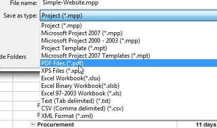microsoft project templates 2010