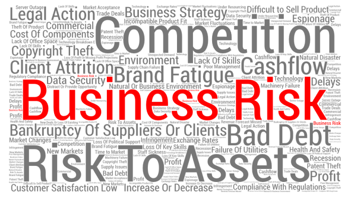 Image result for The most common types of business risks and how to face them